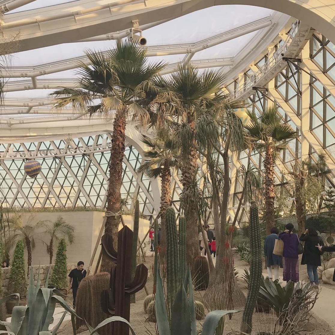 If Singapore has Gardens by the Bay, South Korea has Seoul Botanic ...